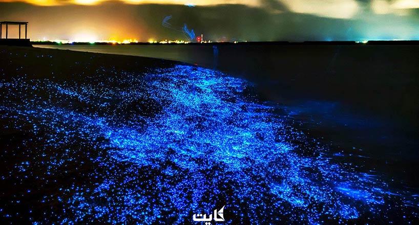 ساحل شب تاب چابهار | ساحل نورانی ایران کجاست؟