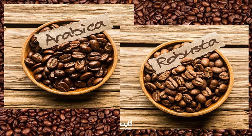 قهوه عربیکا چیست و بهترین قهوه عربیکا را از کجا تهیه کنیم؟