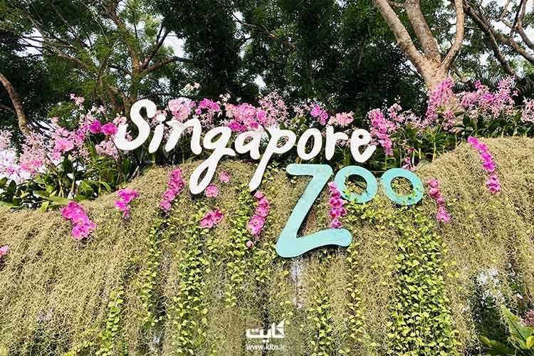 باغ-وحش-سنگاپور،-از-بهترین-باغ-وحشهای-جنوب-شرقی-آسیا