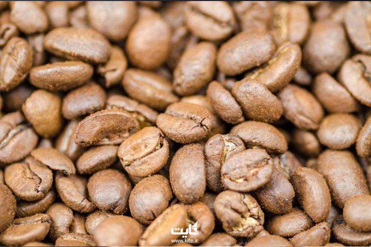 خرید-قهوه-عربیکا
