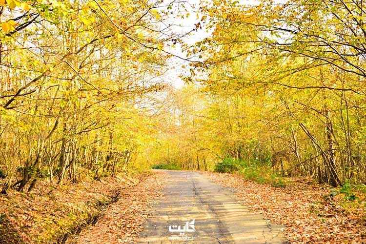 جنگل سراوان