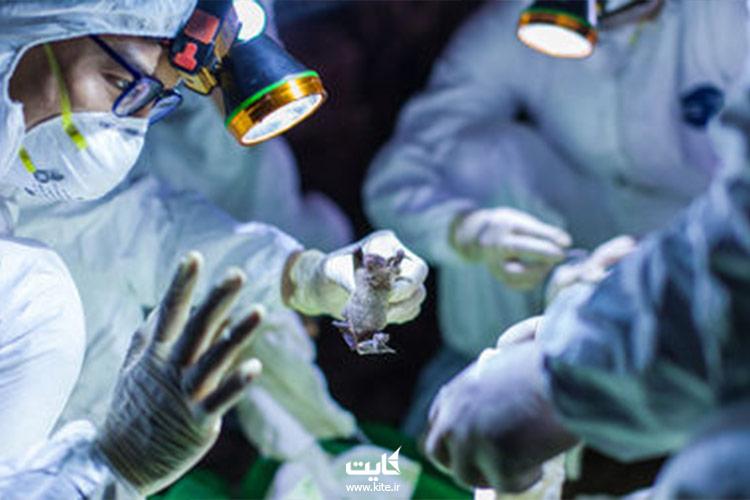 ویروس-کرونا-کشنده-خطرناک
