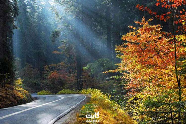 پارک-جنگلی-النگدره-در-فصل-پاییز