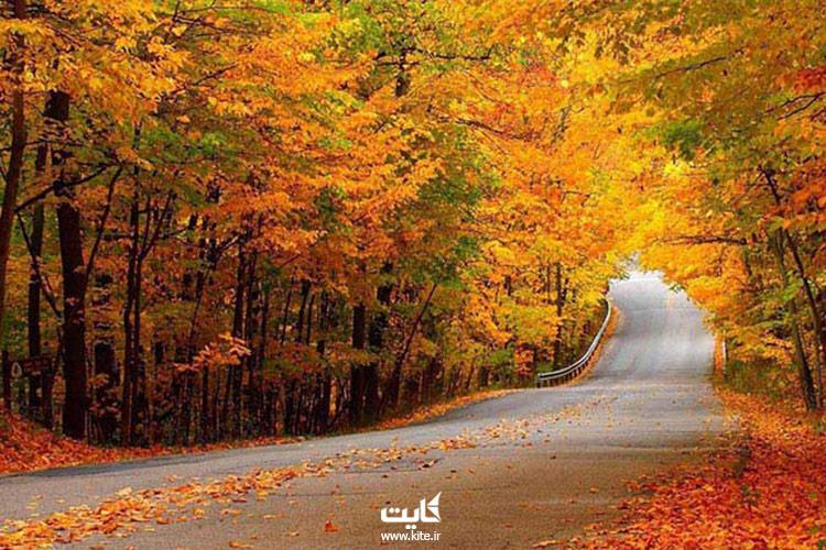 پاییز-پارک-جنگلی-النگدره