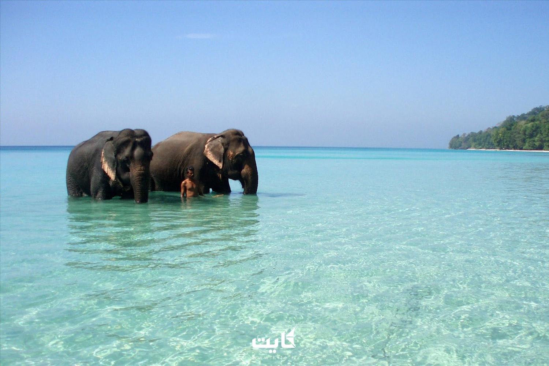 جزیره هاولوک