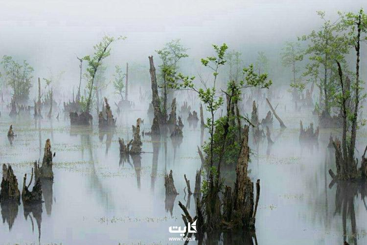 دریاچه ارواح مازندران کجاست