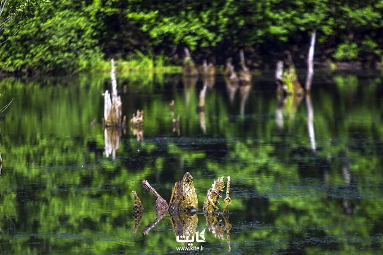 راهنمای سفر دریاچه ارواح نوشهر مازندران