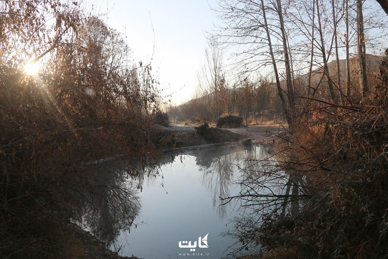 پوشش گیاهی پارک ملی خجیر