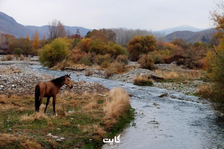 بازدید از پارک ملی خجیر
