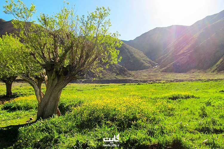 روستای افجه لواسان