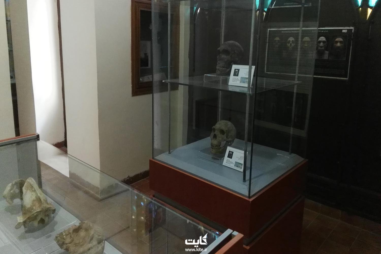موزهی پارینه سنگی زاگرس کرمانشاه