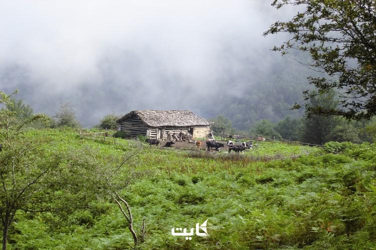 روستای آبکنار