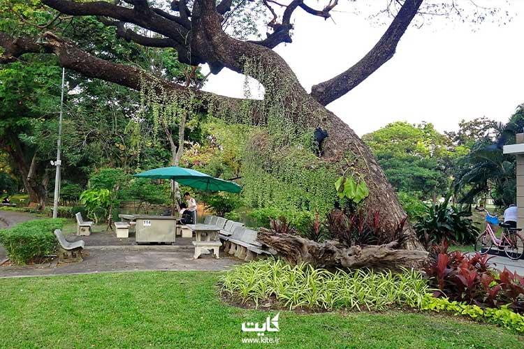 فضای سبز پارک لومپینی بانکوک
