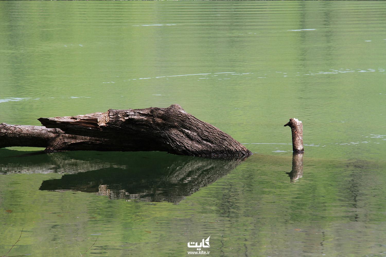 چگونگی اقامت در دریاچهی چورت