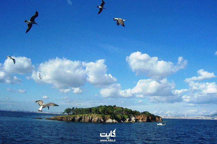 ماجراجویی در جزایر پرنس استانبول