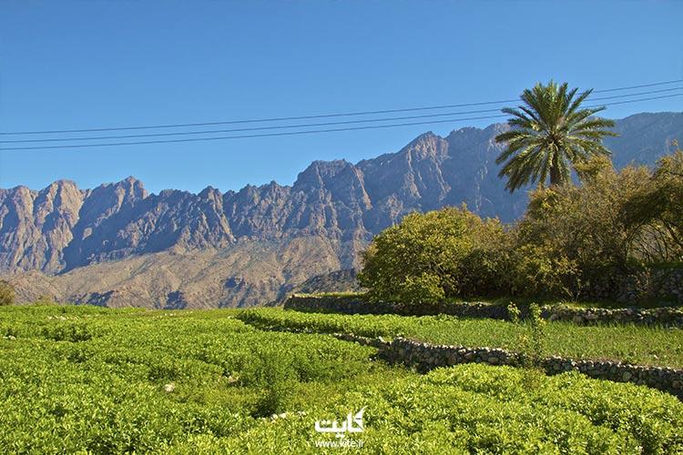 بازدید از روستای استان باطن