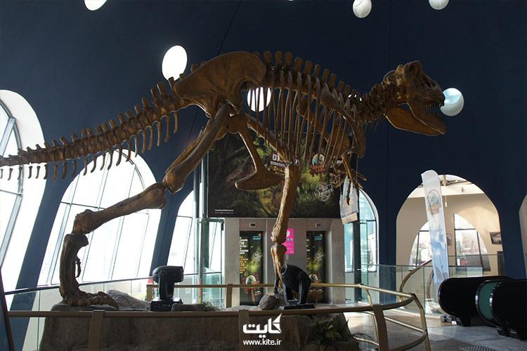ژوراسیک لند   Jurassic Land