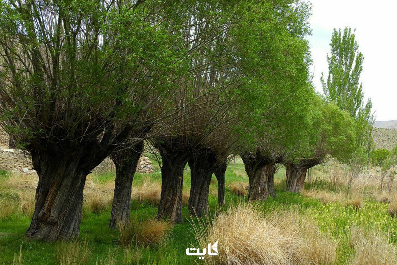 معرفی مقاصد طبیعتگردی در اصفهان