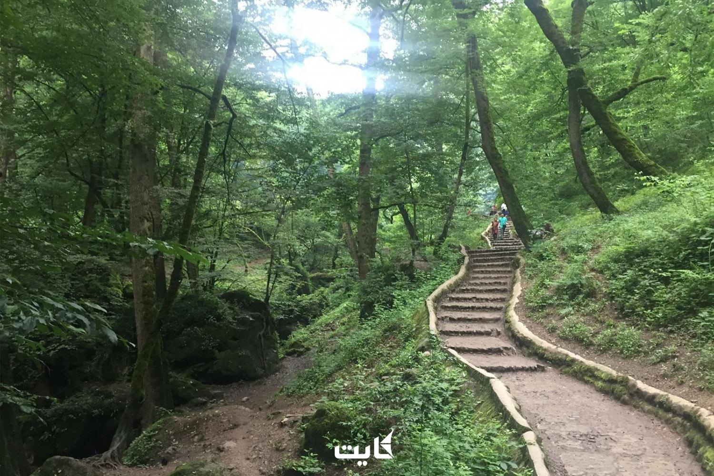 معرفی پارک جنگلی ماسوله