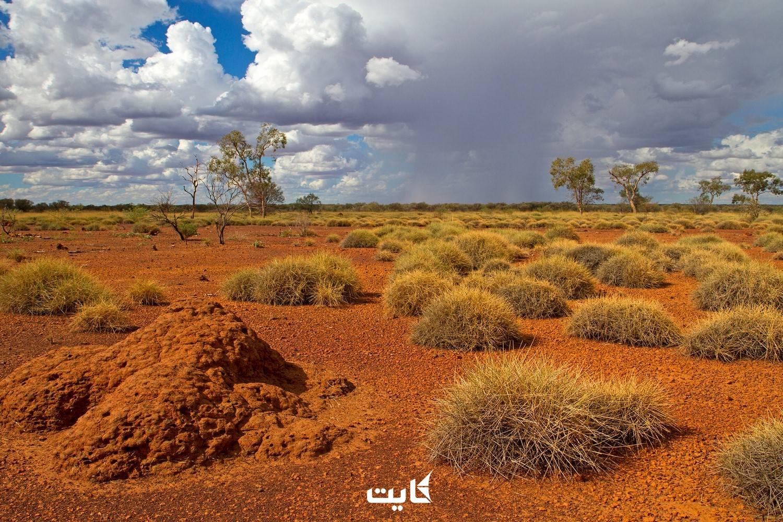 کوئینزلند-استرالیا