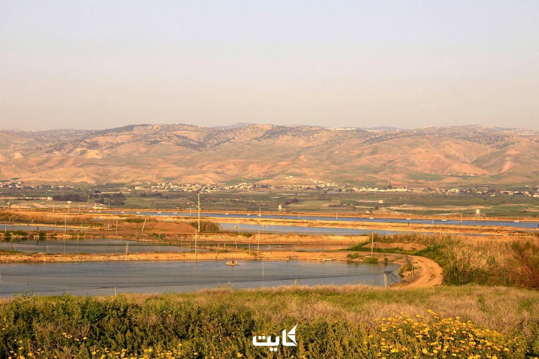 منطقه تیرات زوی-اسرائیل