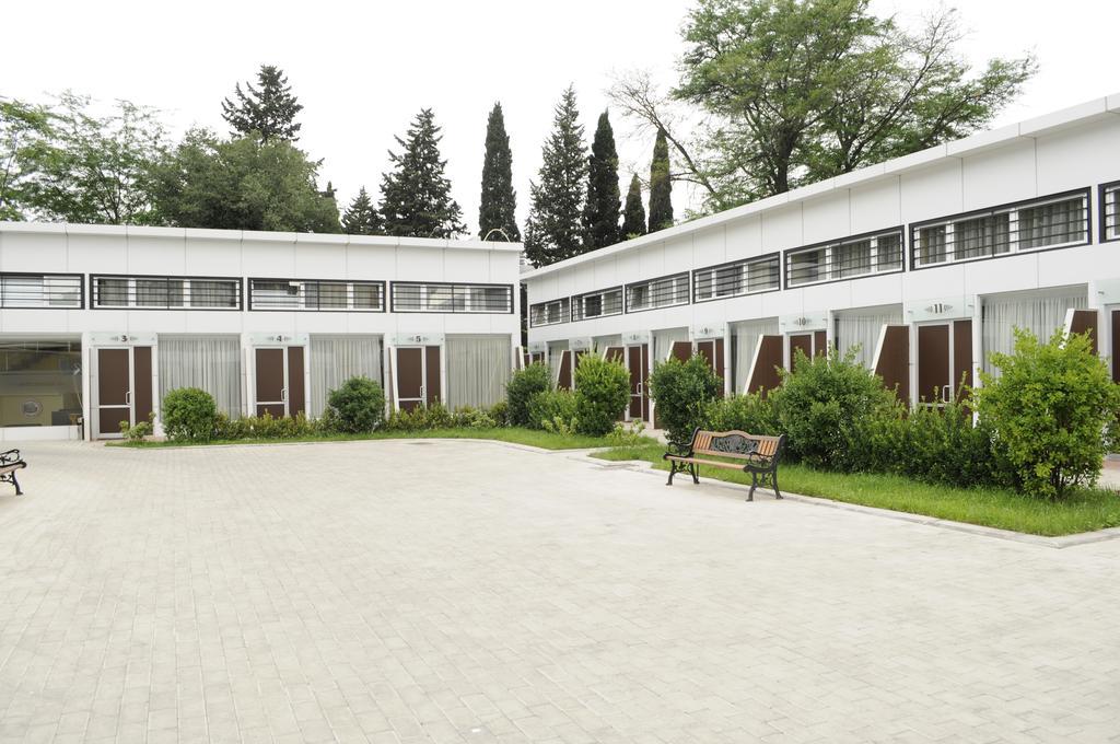 colosseo hotel. garden