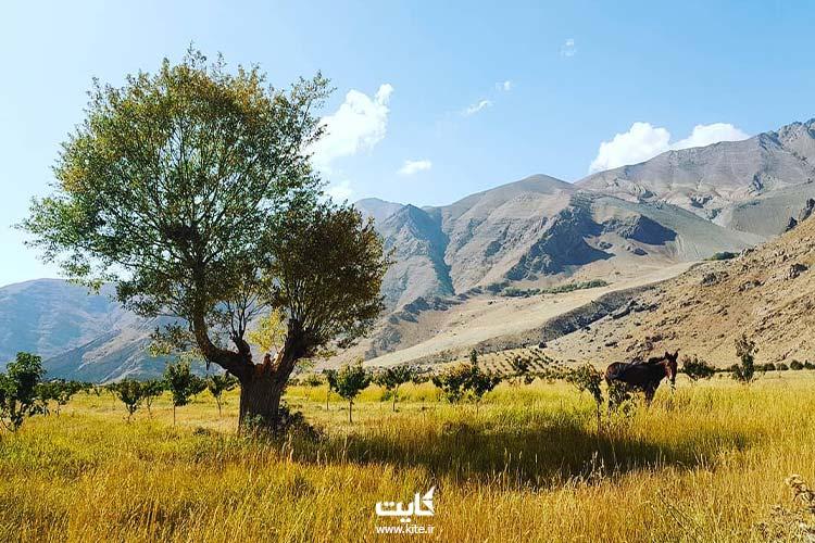 بهترین مکان های  طبیعت گردی اطراف تهران